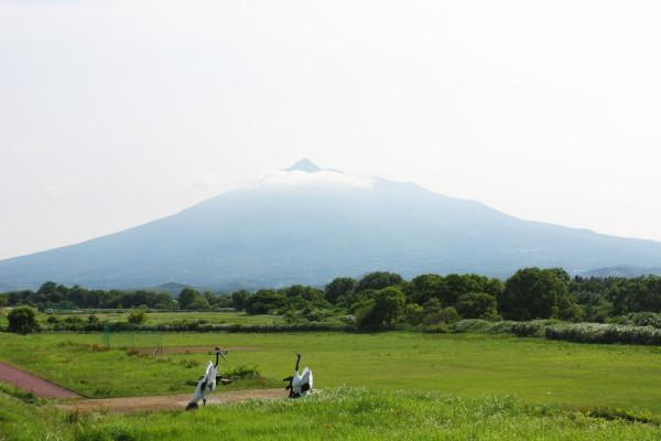 櫻堤公園的岩木山景色